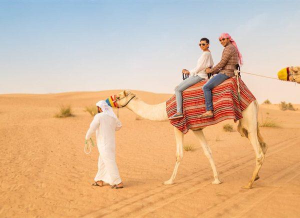 Dubai Desert Camel Safari 880x640 1