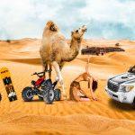 Desert Safari Offer